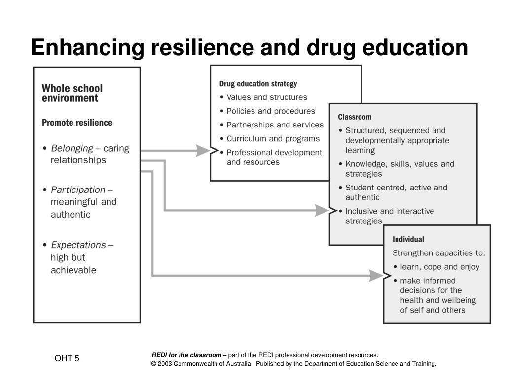 Enhancing resilience and drug education