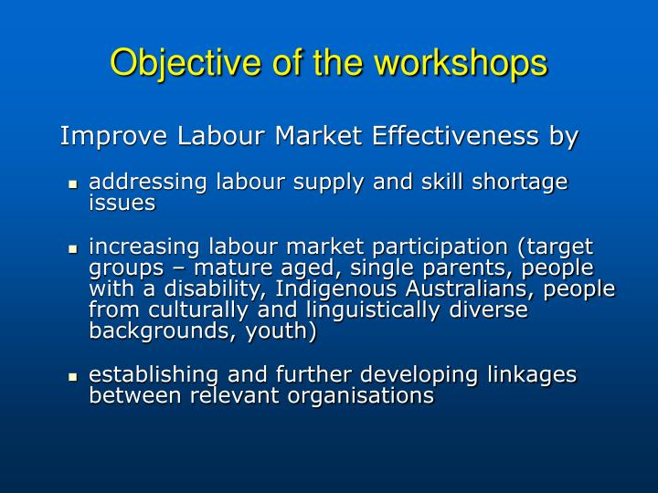 Objective of the workshops