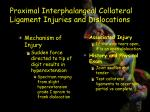 proximal interphalangeal collateral ligament injuries and dislocations3