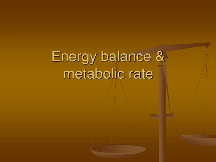 Energy balance metabolic rate