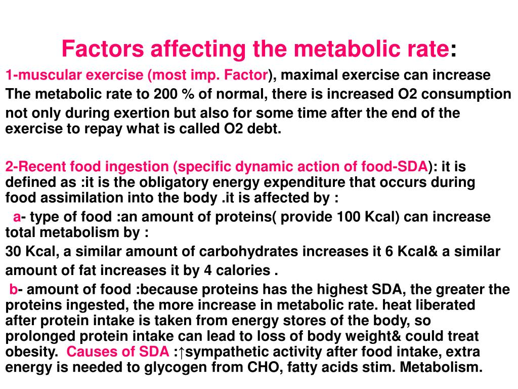 Factors affecting the metabolic rate