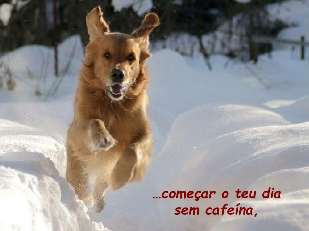 …começar o teu dia sem cafeína,