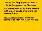 model for employees step 3 be an ambassador for blindness