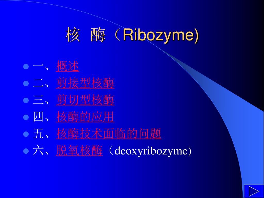 核  酶(