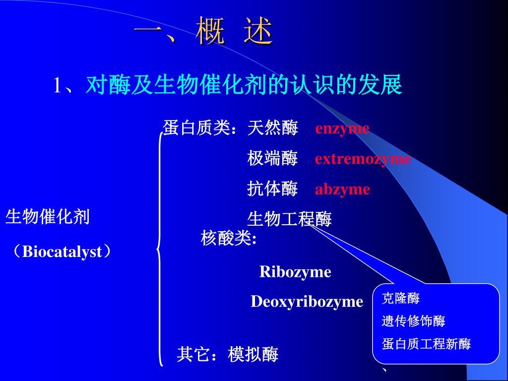 蛋白质类:天然酶