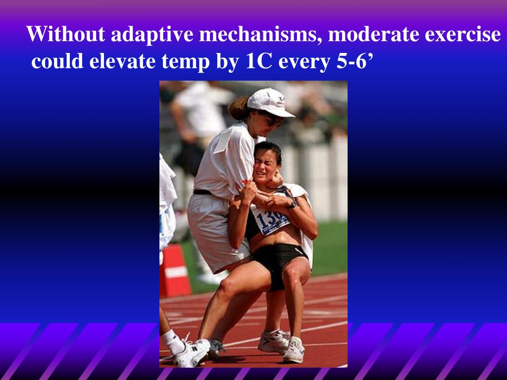 Without adaptive mechanisms, moderate exercise