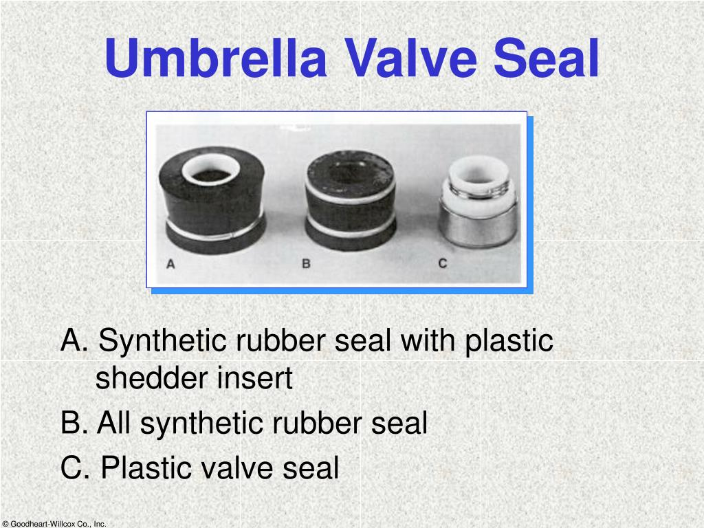 Umbrella Valve Seal