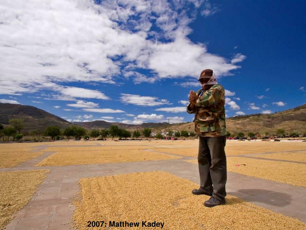 2007: Matthew Kadey