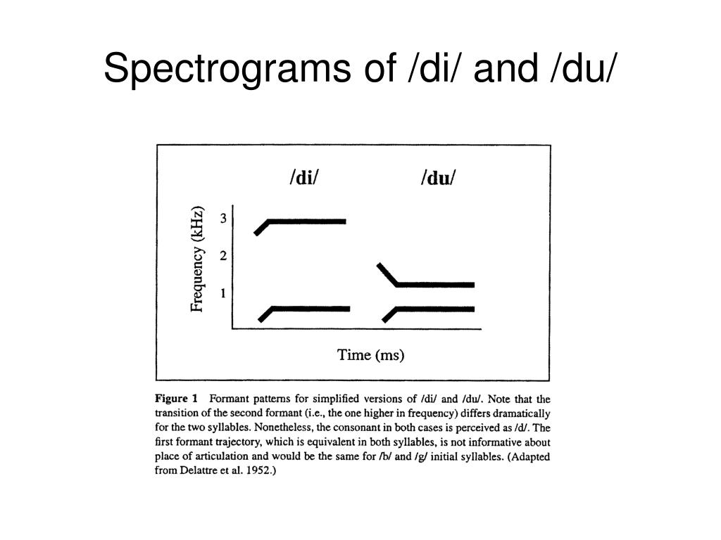 Spectrograms of /di/ and /du/