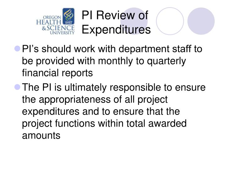 PI Review of Expenditures