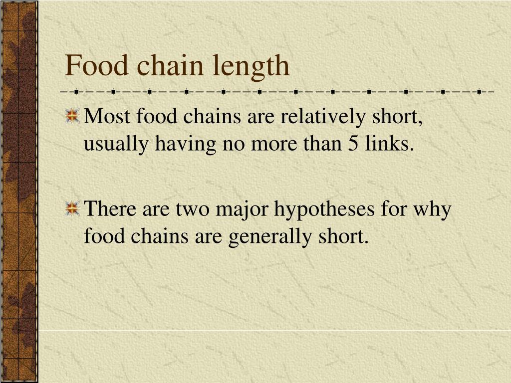 Food chain length