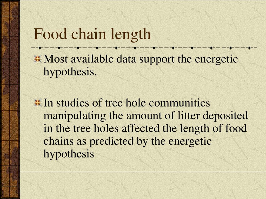 Food chain length
