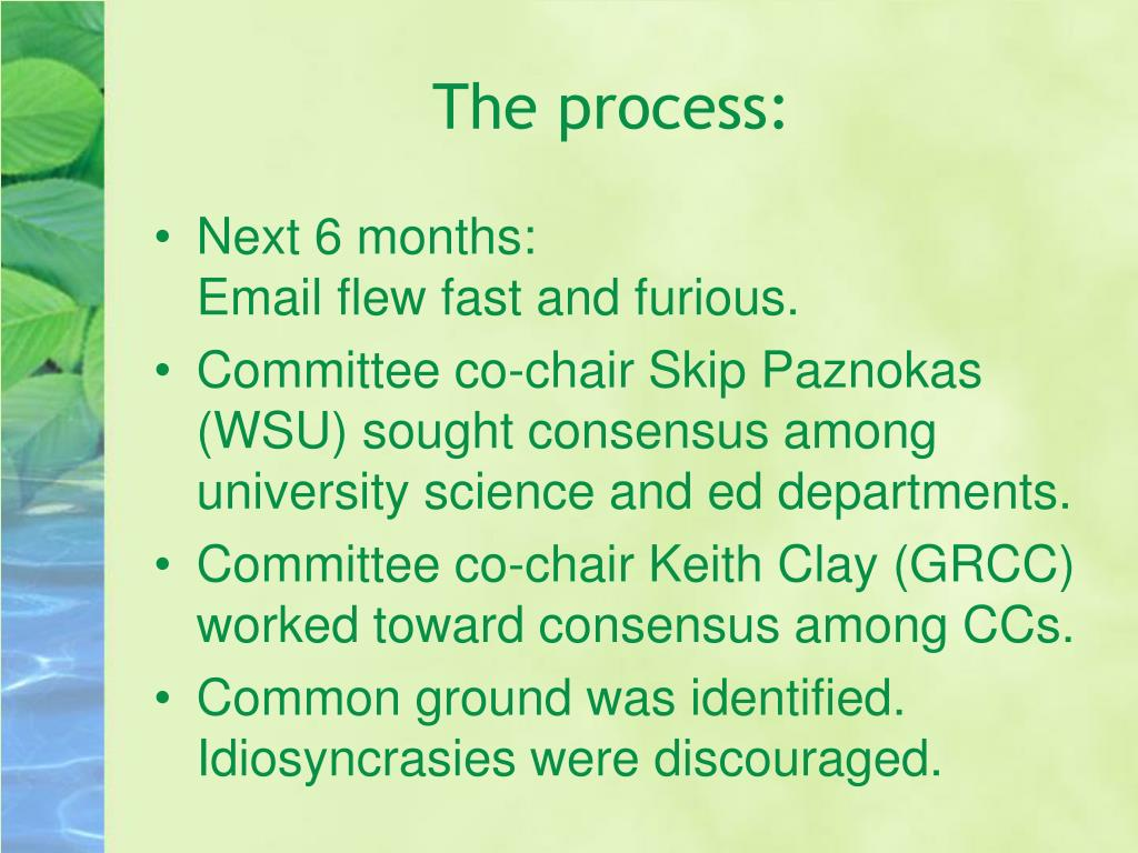 The process: