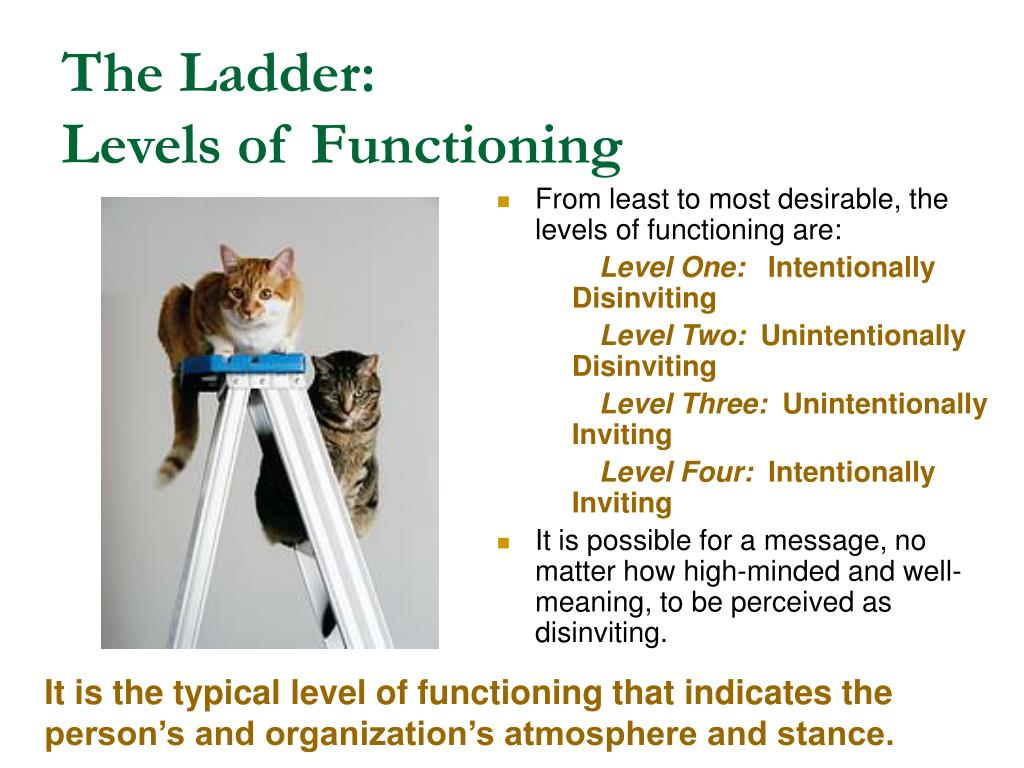 The Ladder: