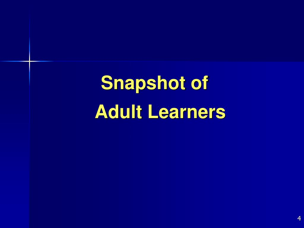 Snapshot of Adult Learners