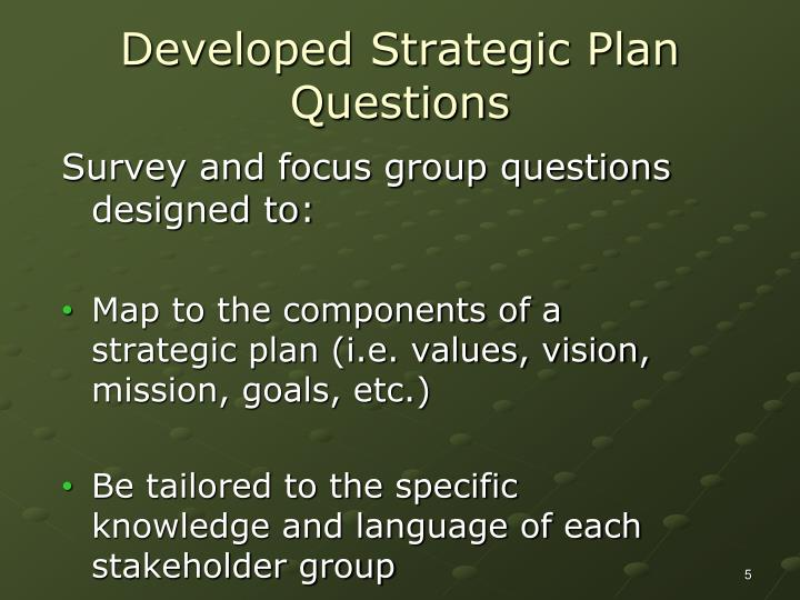 Developed Strategic Plan Questions