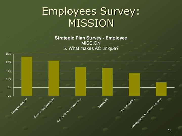 Employees Survey: