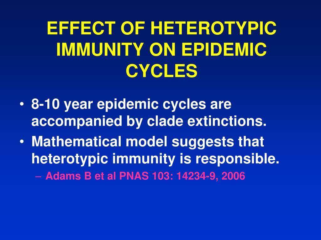 EFFECT OF HETEROTYPIC IMMUNITY ON EPIDEMIC CYCLES