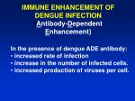 immune enhancement of dengue infection a ntibody d ependent e nhancement
