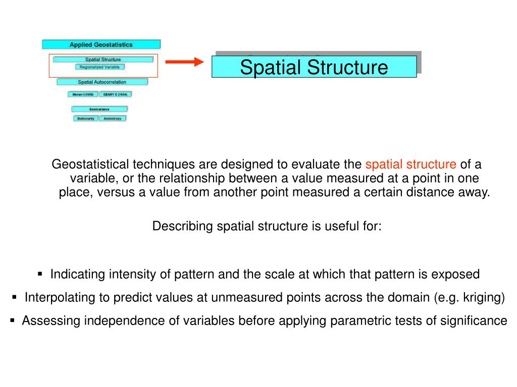Spatial Structure