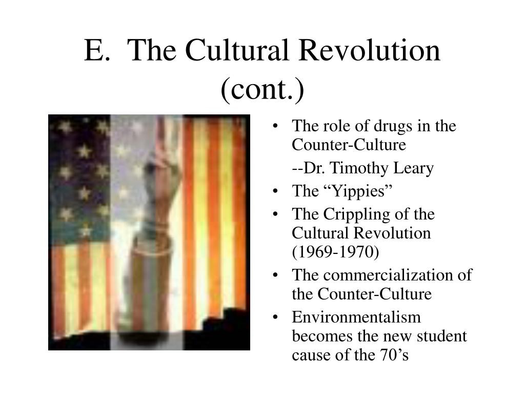 E.  The Cultural Revolution (cont.)
