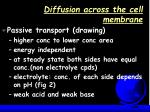 diffusion across the cell membrane