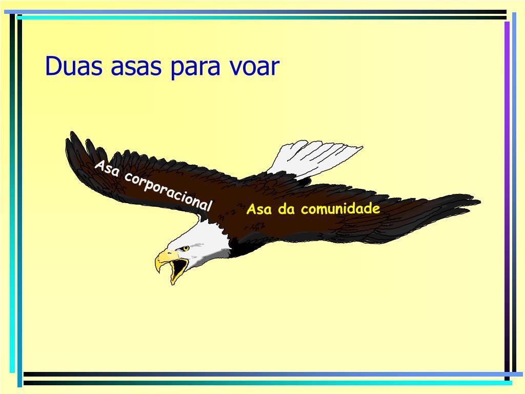 Duas asas para voar