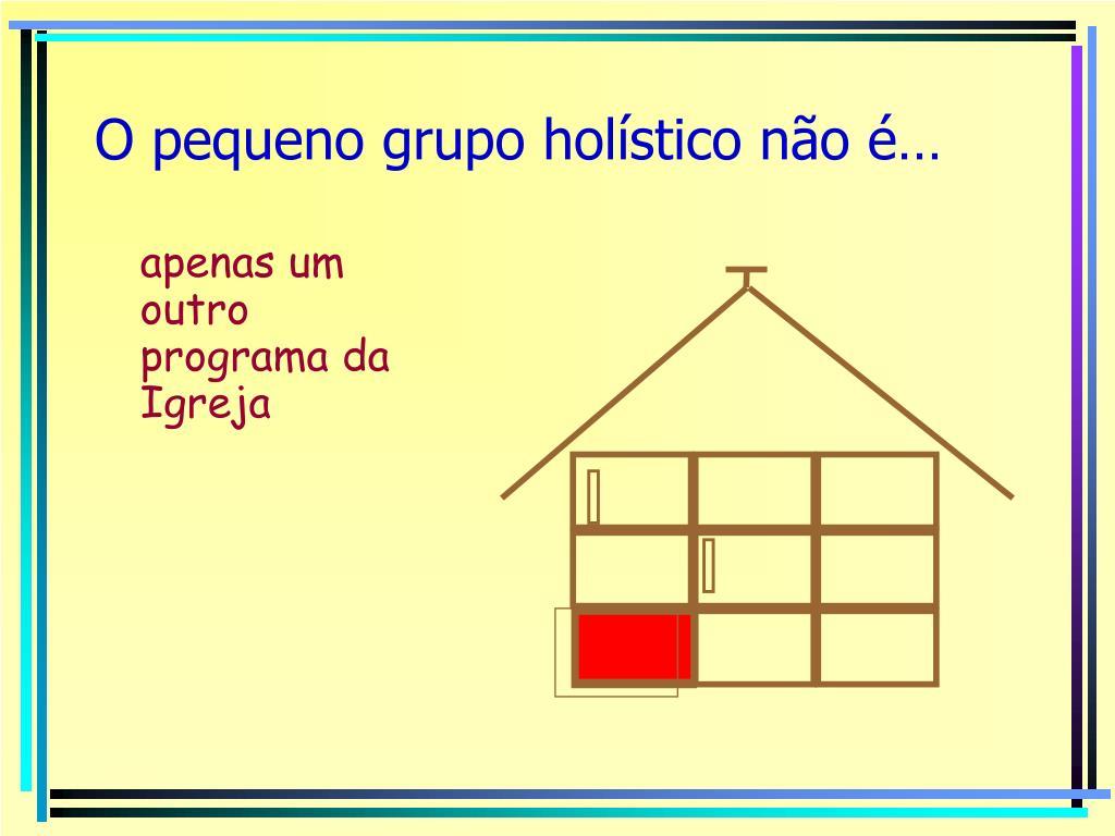 O pequeno grupo holístico não é…