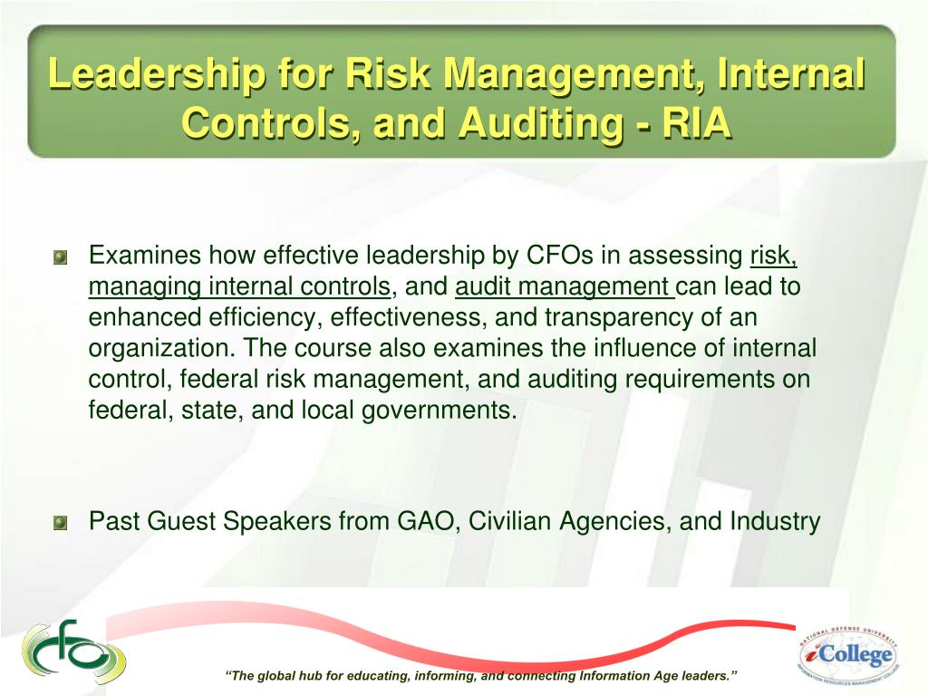internal control and risk management pdf
