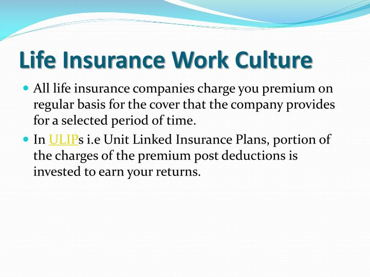 Life insurance work culture