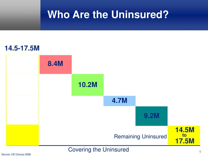 Who are the uninsured l.jpg