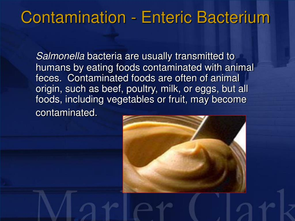 Contamination - Enteric Bacterium