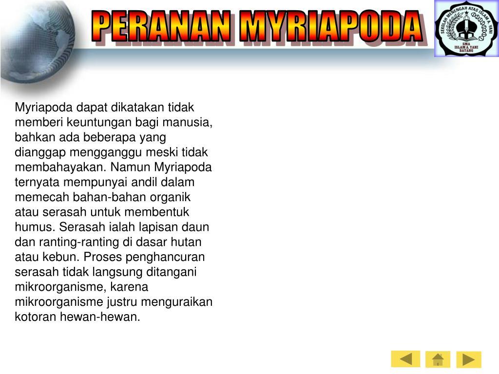 PERANAN MYRIAPODA