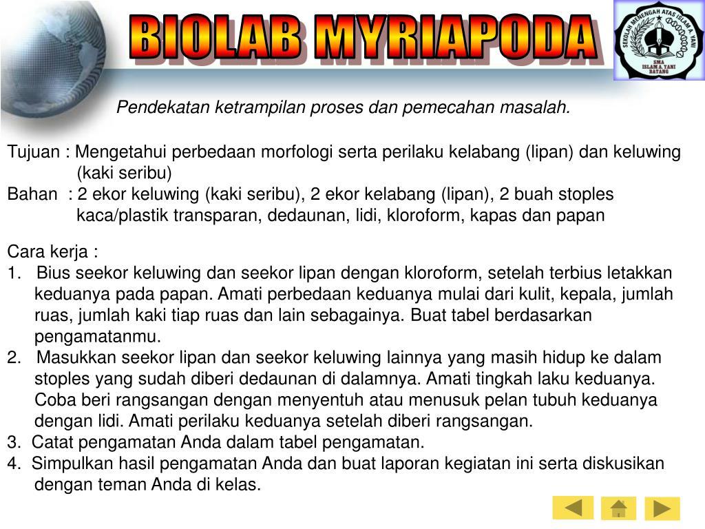 BIOLAB MYRIAPODA