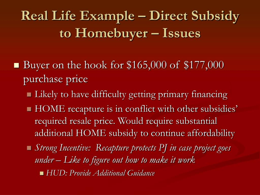 Real Life Example – Direct Subsidy to Homebuyer – Issues