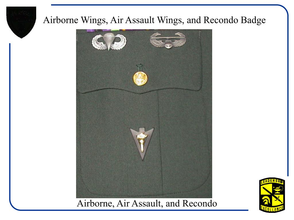 Airborne Wings, Air Assault Wings, and Recondo Badge