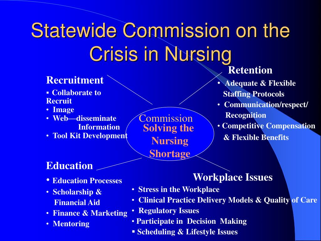 Statewide Commission on the Crisis in Nursing
