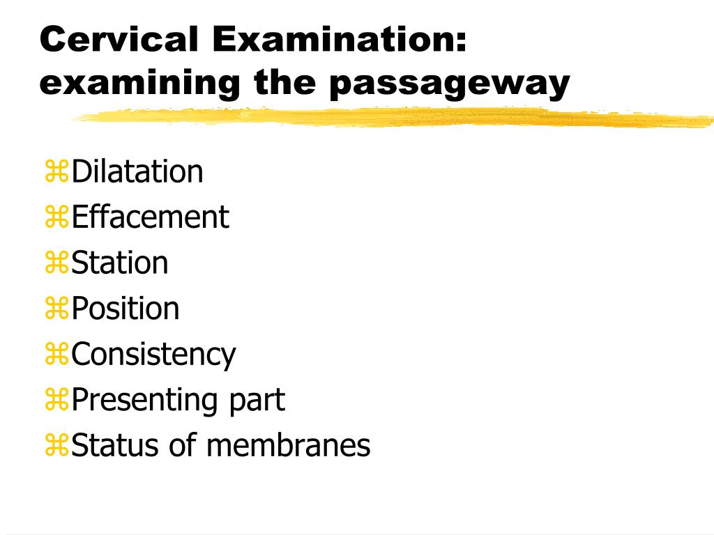 Cervical Examination: examining the passageway