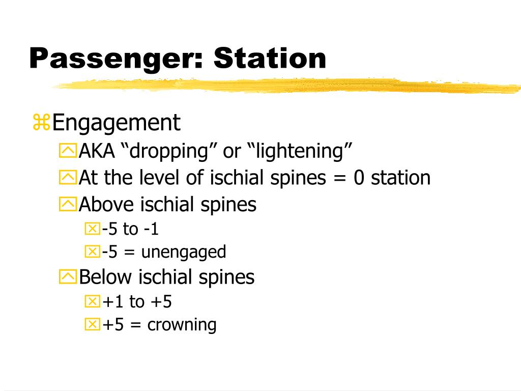 Passenger: Station