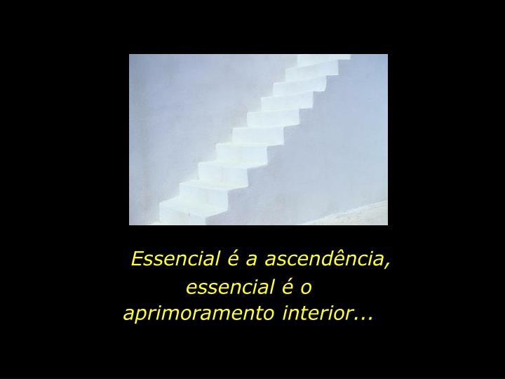 Essencial é a ascendência,