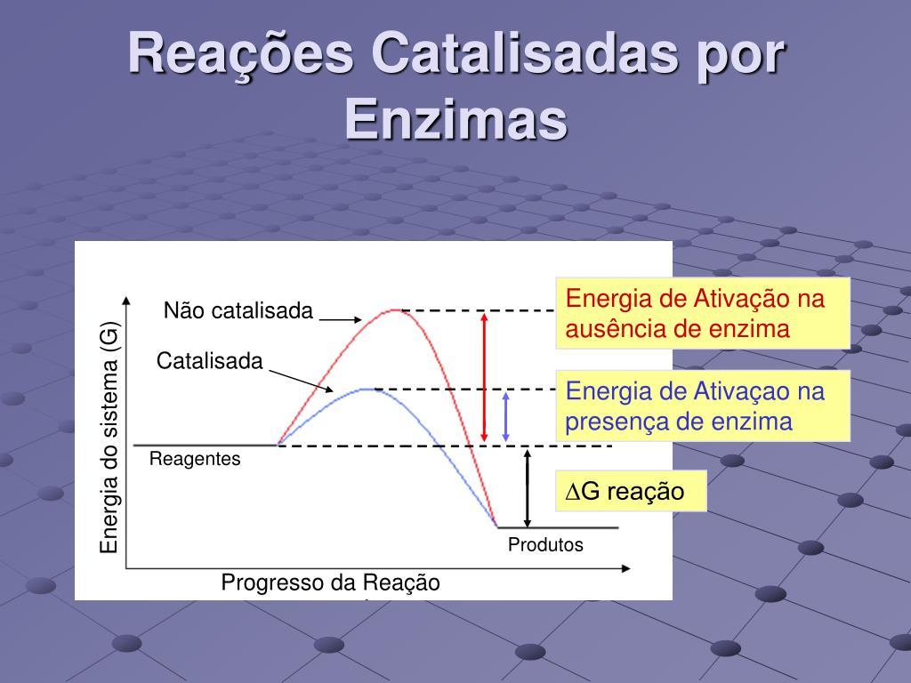 Reações Catalisadas por Enzimas