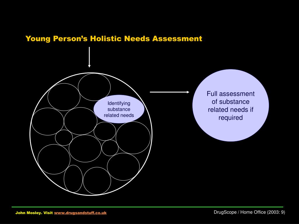 Young Person's Holistic Needs Assessment