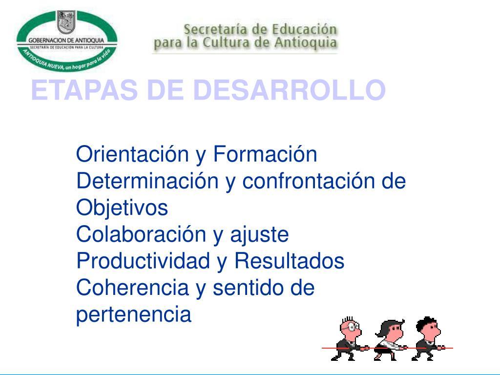 ETAPAS DE DESARROLLO
