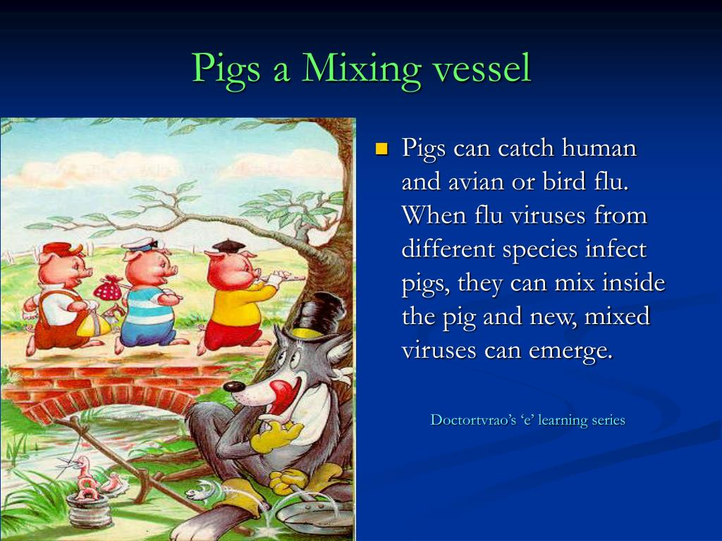 Pigs a Mixing vessel