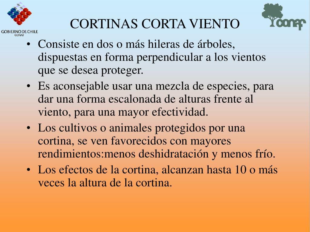 CORTINAS CORTA VIENTO