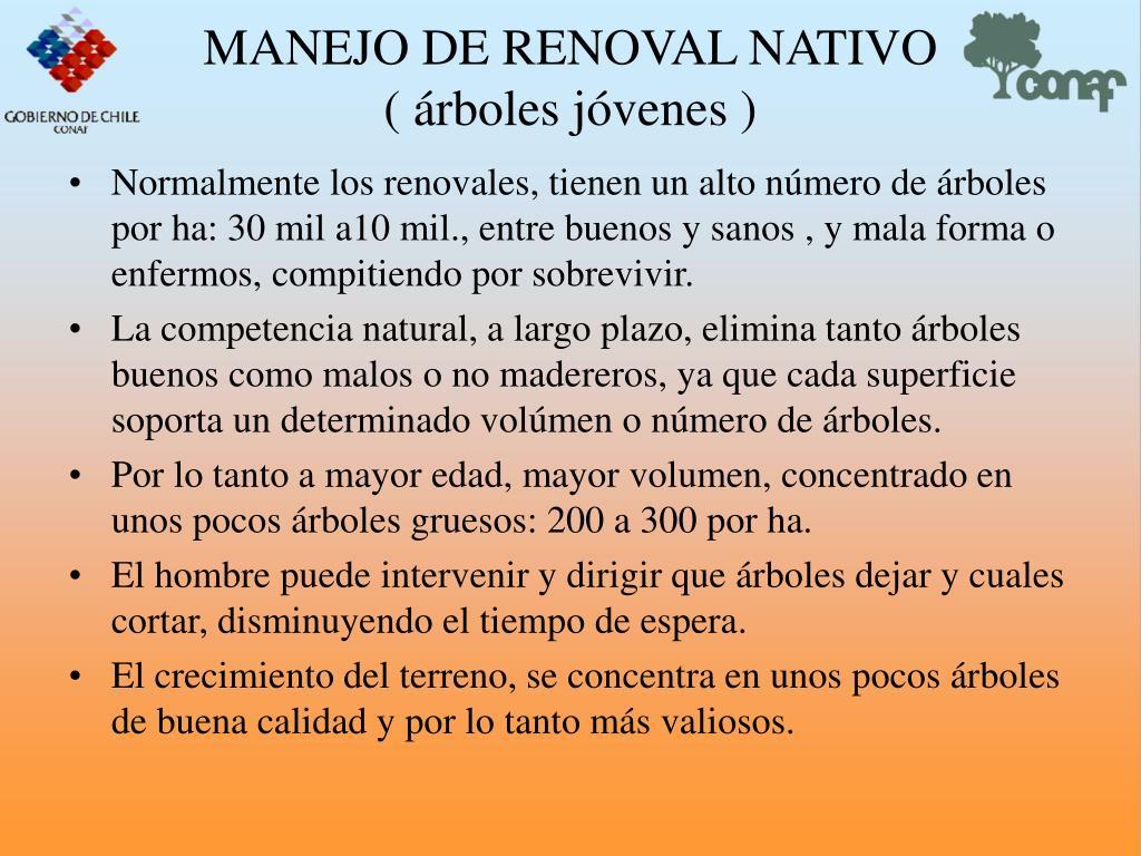 MANEJO DE RENOVAL NATIVO