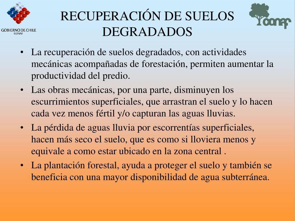 RECUPERACIN DE SUELOS DEGRADADOS