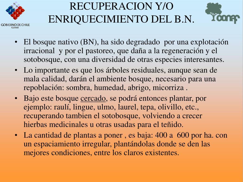 RECUPERACION Y/O ENRIQUECIMIENTO DEL B.N.