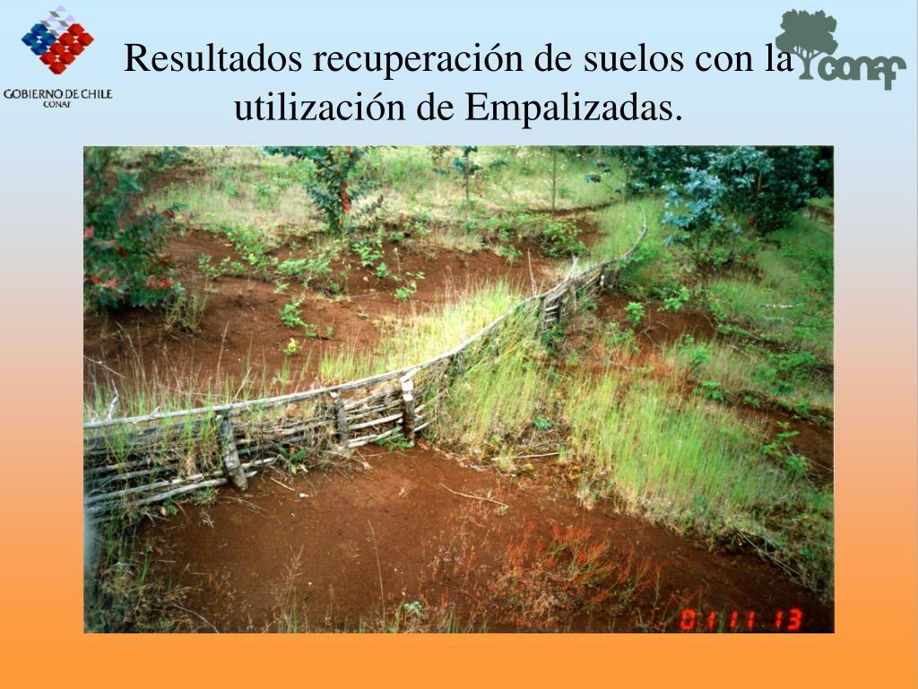 Resultados recuperacin de suelos con la utilizacin de Empalizadas.