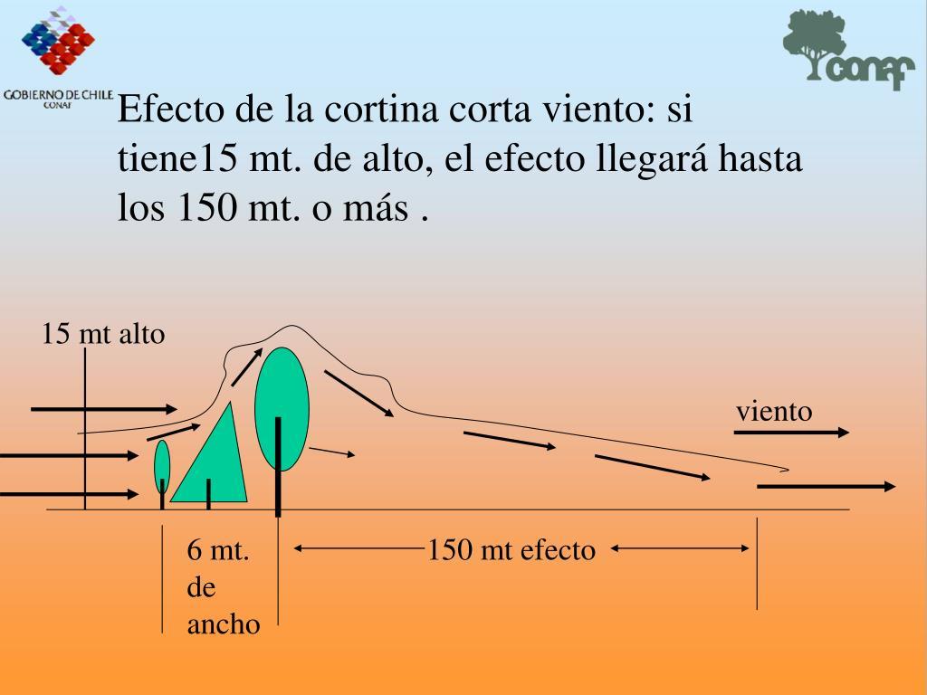 Efecto de la cortina corta viento: si tiene15 mt. de alto, el efecto llegar hasta los 150 mt. o ms .